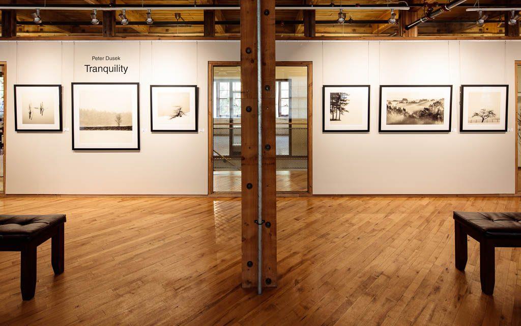 Peter Dusek - Headwaters Arts Gallery